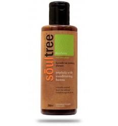 Органический шампунь Soultree для восстановления волос с Трифалой и кондиционером из Хны